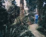 GW_Bukit Tinggi (10 of 27)